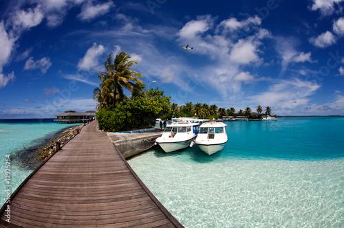 Foto Rollo Basic - Sun Island