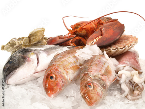 Poster Vis Frischer Fisch auf Eis