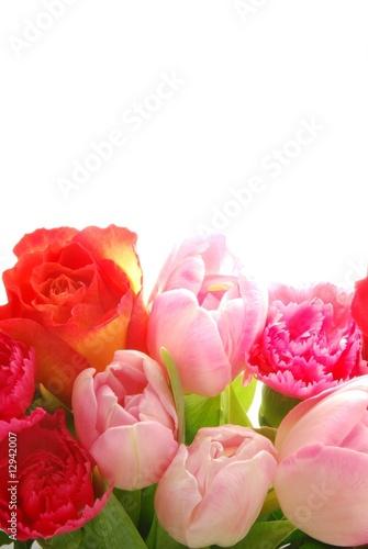 Fotobehang Macro Spring flowers