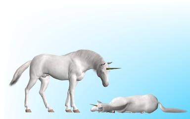 Obraz na płótnie Canvas Unicorn