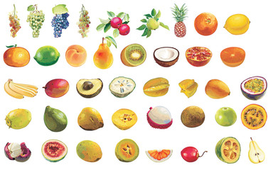 Some fruit