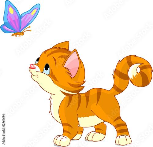 ladny-kotek-patrzac-na-motyla-wektor