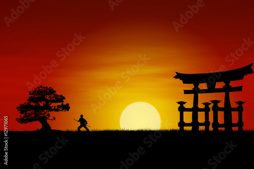 Spoed Foto op Canvas Japan Japanese Sunset