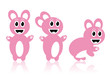 Three pink rabbits - vector image