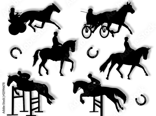 Fotografie, Obraz  Equitazione