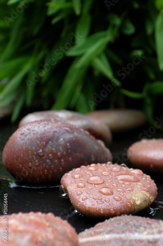 Doppelrollo mit Motiv - Steine im Regen (von Stefan Körber)