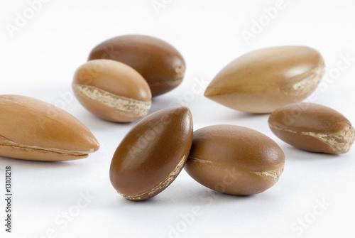 Photo seeds of argan