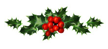 Clipping Path, Branch Of Holly...