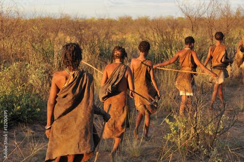 Türaufkleber Afrika bushmen in the kalahari desert