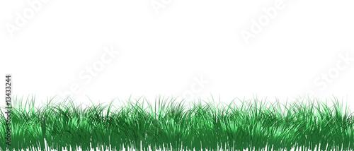 Fotografie, Tablou  Gras freigestellt