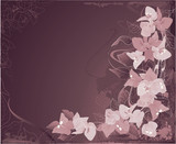 Abstract grunge background with violet bougainvillea and swirls.