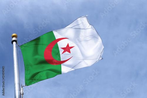 Poster Algérie drapeau algérie