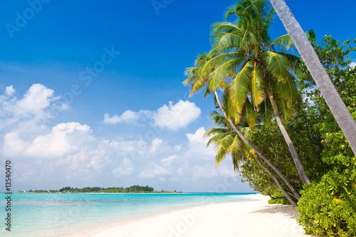 Foto-Schiebegardine Komplettsystem - Tropischer einsamer Strand