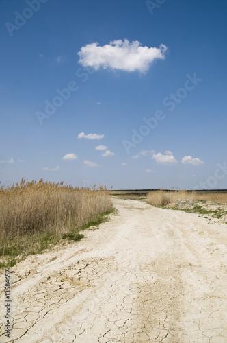 Fototapeta Road ir rural area obraz na płótnie
