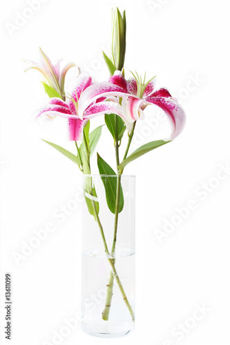 Fotografiet Stargazer Lilies in Vase