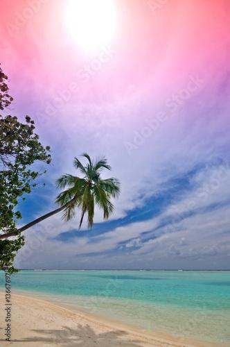 Foto-Leinwand - einsamer tropischer Traumstrand