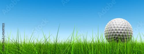 Deurstickers Golf conceptual 3D golf ball on green grass over a blue sky