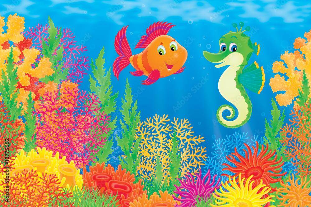 Foto-Stoff - Coral fish and seahorse