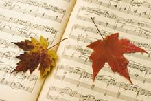 "Tchaikovsky,    ""The Seasons -"