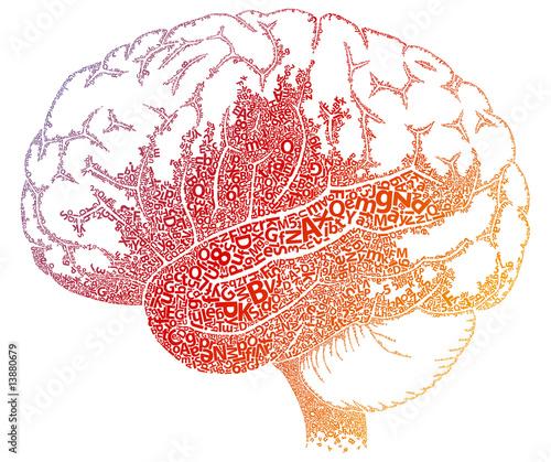 Fotografie, Obraz  Brain letters