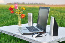 Laptop On The Nature