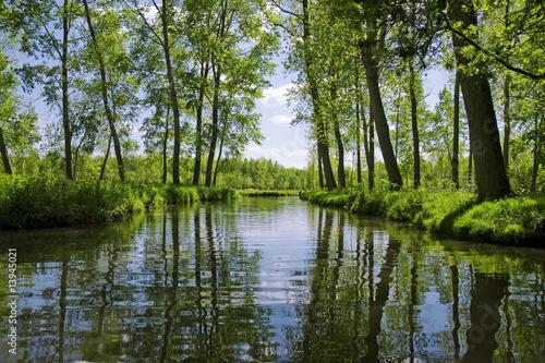 Valokuva  canaux de la venise verte