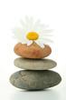 massage et ambiance zen