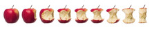 Red Apples In Progress Towards White Background