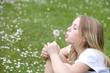 canvas print picture - Maedchen, blond, 13 Jahre, Wiese, Pusteblume, blasen