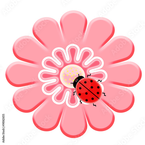 Poster Coccinelles Ladybug on the pink flower