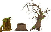 Various Dead Trees