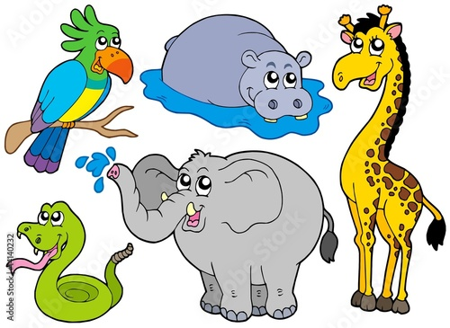 Deurstickers Zoo Wildlife animals collection