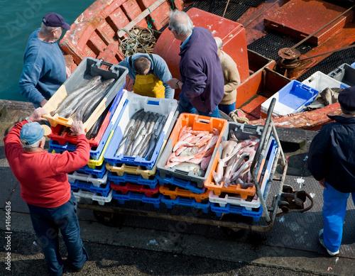 Slika na platnu pêcheurs et poissons