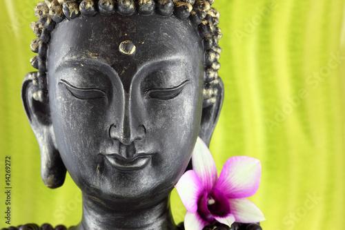 Akustikstoff - Bouddha zen et fleur d'orchidée