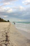 lomg distance shot of couple walking beach
