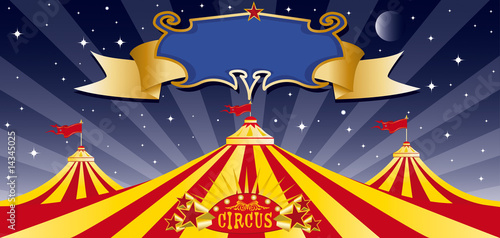 Valokuva  Circus big top in the night