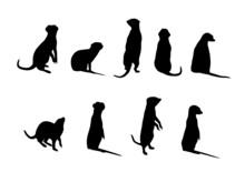 Meerkat Silhouettes (Suricata Suricatta)
