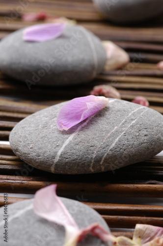 Doppelrollo mit Motiv - Orchid petals with spa stones