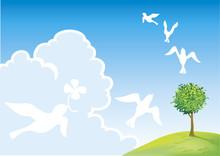 ハトと草原と木