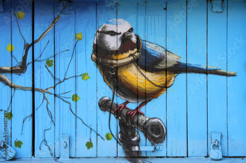 obraz PCV Graffity bird