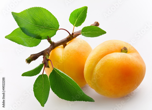 Fotografia Apricots with leaves on a white background.