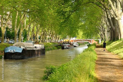 Fotografie, Obraz  Le canal du Midi (Toulouse).