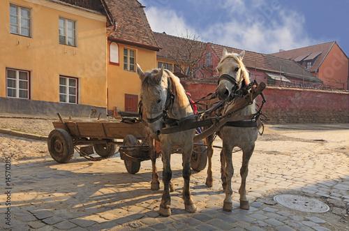 Fotografie, Obraz  Streets of Sighisoara-Transylvania,Romania