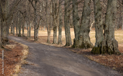 Keuken foto achterwand Schip Footpath