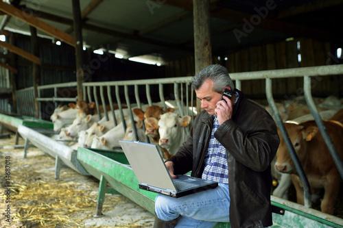 Fotografie, Obraz  homme avec ordinateur et téléphone portable