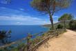 Toscana, passeggiata sul mare