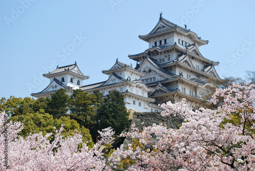 Himeji Castle during cherry blossom