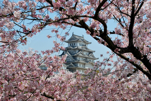 Photo sur Toile Japon Himeji Castle during cherry blossom