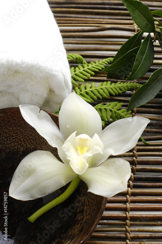 Tuinposter Spa White orchid in a spa