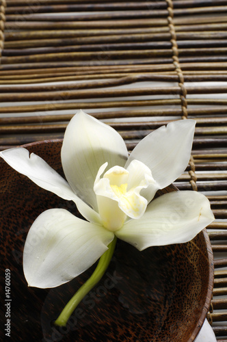 Fotobehang Spa bowl of orchid on bamboo mat